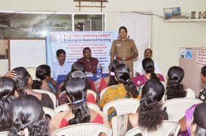 Circle Inspector of Police Nithravilai inaugurates seaweed training